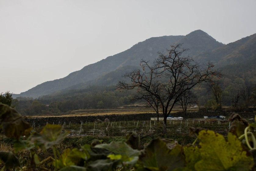 Otoño y lluvia en una aldea tradicional. Un minuto de silencio por la cámara que tomó está foto.